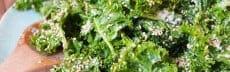 entrée végétarienne kale orange