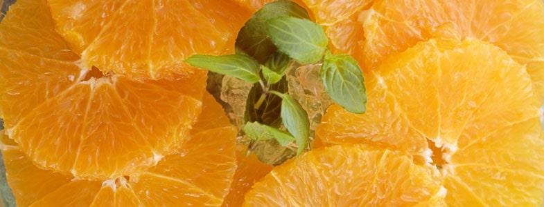 orange-fleur-oranger