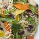 recette vegetarienne spaghettini carottes endives