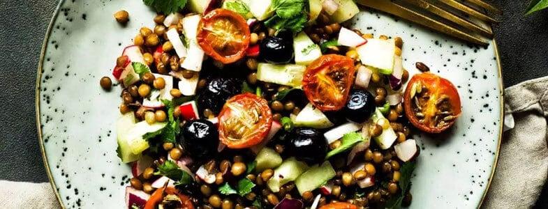 recette-vegetarienne-salade-lentilles-myrtilles