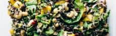 salade-automne-riz-sauvage-sauce-citron