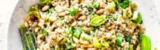 recette-vegetarienne-quinoa-poireau