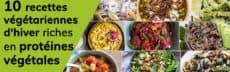 Les 10 recettes végétariennes d'hiver riches en protéines végétales