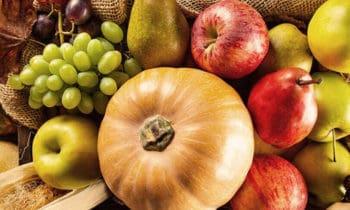 Recettes végétariennes faciles avec les fruits et légumes d'octobre