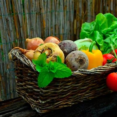 abonnement-menu-vegetarien-semaine-3-mois