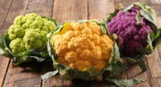 Recettes végétariennes faciles avec les fruits et légumes de février