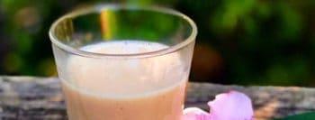 boisson-pepins-melon