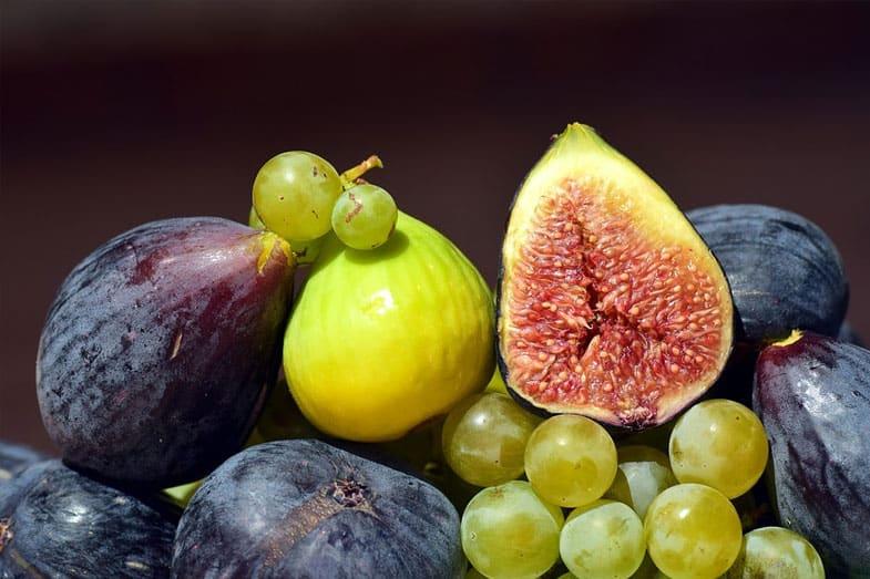 fruits-legumes-aout